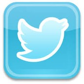 The second twitter logo