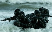Navy Seal's