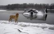 lake house!!!!!