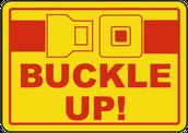 Safety Belt Laws