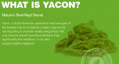 Yacon Cause Syrup - Could it be Suited to Your Daily Diet?