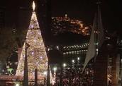 Christmas tree in Cuenca