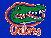 #1 University of Florida