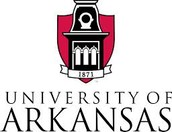 #2-University of Arkansas