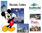 Orlando Vacation Homes For rent and Vacation Deals
