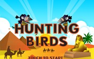 About Hunting Birds