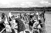 Участники строительства деревянных противотанковых оборонительных сооружений на подступах к Москве. 1942 г.