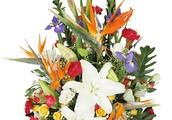 Send Affordable Flowers And Cakes Through Online Faridabad Florist