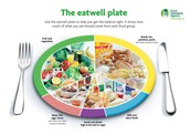 Healthy Food Portions