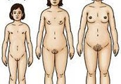 Physical Changes (Women)