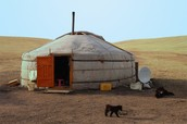 Climate change in Mongolia destroying pastures on which nomadic herders rely