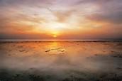 Coastal plain at sunset