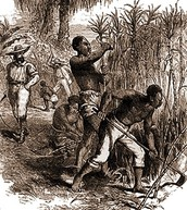 The loss of slaves to work in the fields.
