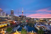 Auckland: a melting pot