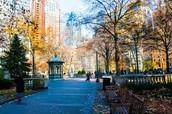 Camine Rittenhouse Square