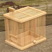 A Cricket cage