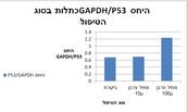 היחס p53/GAPDH כתלות בסוג הטיפול