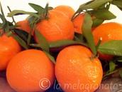 limoni/clementine(nova)
