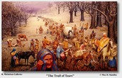 Reason 1. Trail of Tears