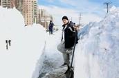Shoveling the snow
