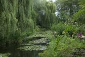 Frankrike, Normandie: Monets trädgård i Giverny