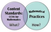 Using the Math Practice Standards Effectively