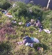 Residuos domiciliarios encontrados a las afueras de la ciudad