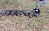 De cazando puercos salvajes
