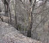 Babi Yar ravine in Kiev.