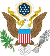 bald eagle symbol