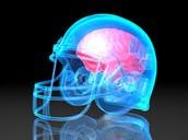 Brain in a football helmet