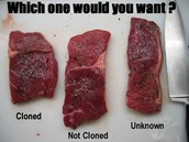 Cloned Meats