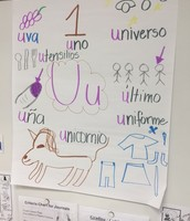 Anchor Chart Frenzy!