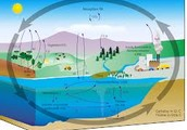An introduction to the carbon cycle