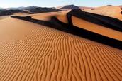 Kalihari Desert