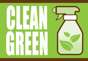 Spring Green Cleaning