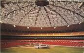 Astrodome  Type & Size