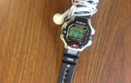 This is What the Watch Looks Like!