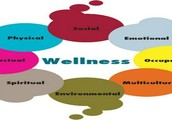 Wholistic Wellness: identifying and exploring health concerns and personal challenges and creating life plans to incorporate healthy practices and personal routines.  When you empower your mind, inspire your spirit and nourish your body you are able to be fully present and engaged in life.