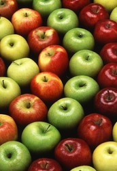 There are no diiferent variations of apples
