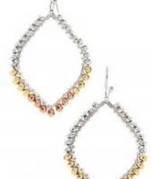 Raina Earrings $19.50