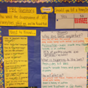 PBL Spotlight: Our Grade Level Driving Questions for Project 2