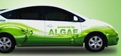 biomass cars