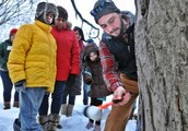 Maple Tree Tapping Open House