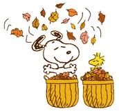 Fall Break Activities