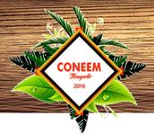 ALIANZA AIESEC - CONEEM