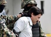 """This is Joaquín Guzmán Loera or El Chapo """"Shorty"""""""