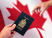 Immigration In Canada in 2050