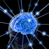 What is Cognitive Psychology???