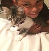 Tripp and Sadie